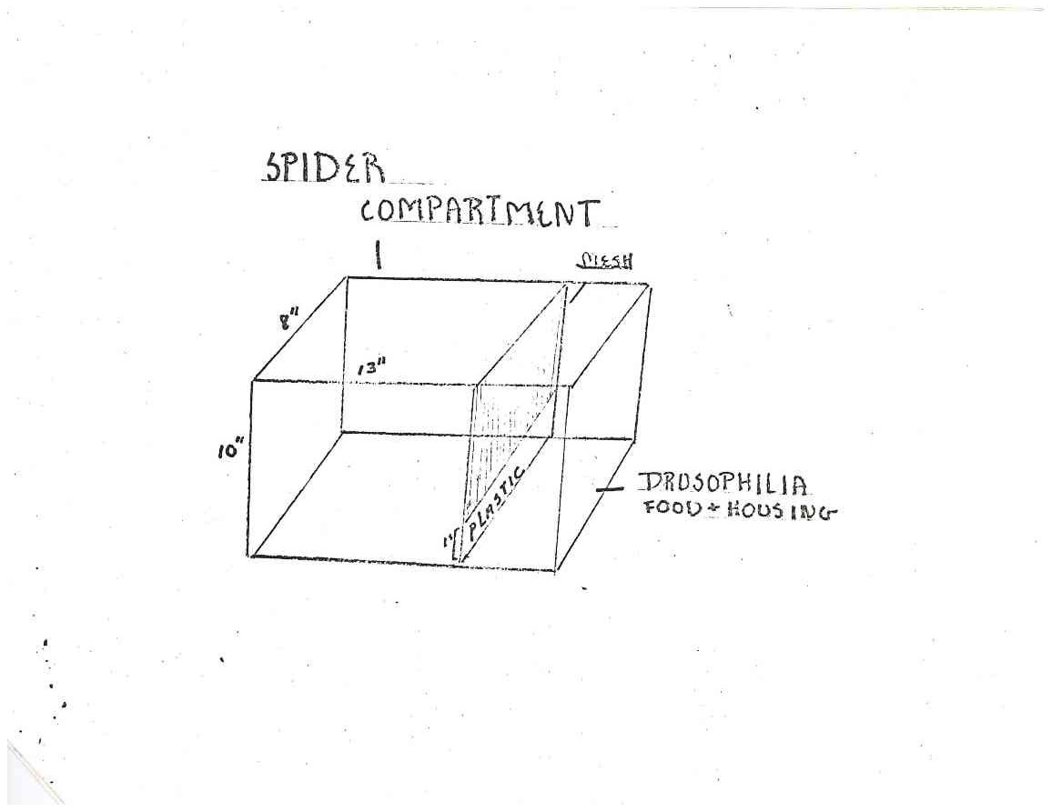 Design for the Student Experiment's Spider Compartment. Page 1 of the I-V-23 Skylab Student Project: Web Formation in Zero Gravity, 1973. From the Records of the National Aeronautics and Space Administration. National Archives Identifier: 20150116