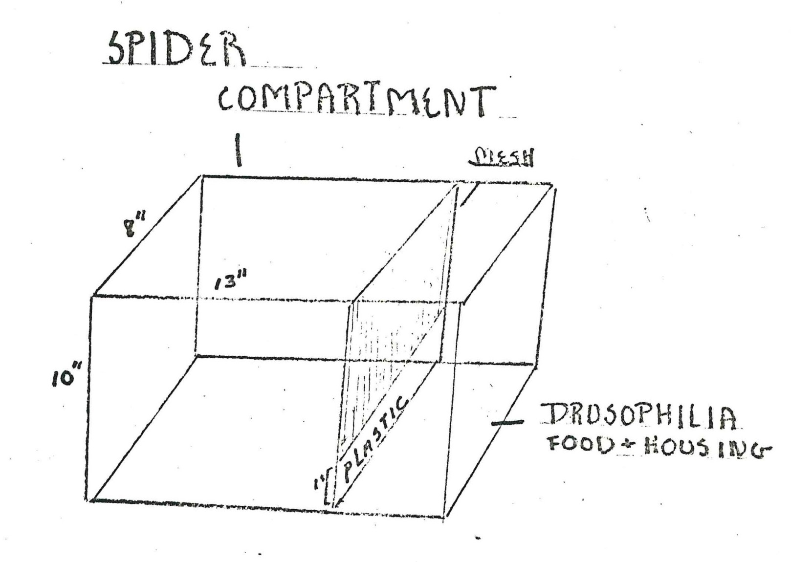 Spider compartment drawing from a Skylab student project